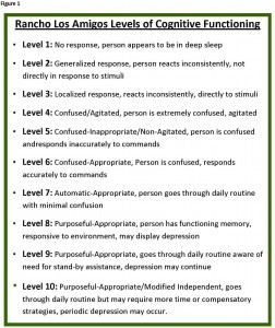 Rancho Los Amigos Levels of Cognitive Functioning Scale
